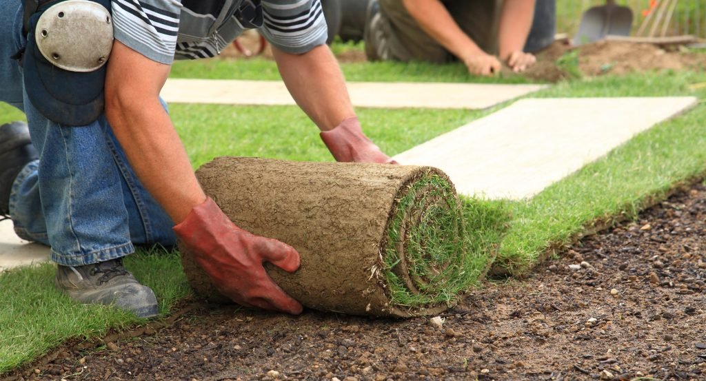 Sodding Installation in Progress by JHC Landscaping Toronto