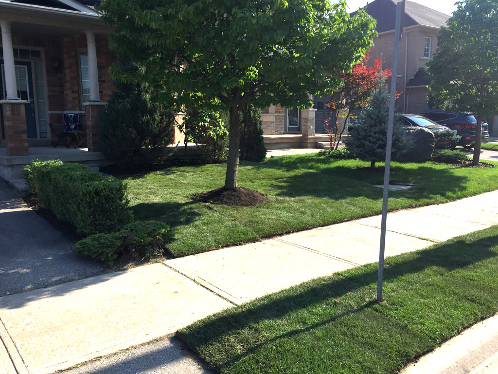 landscaping companies in richmond hill