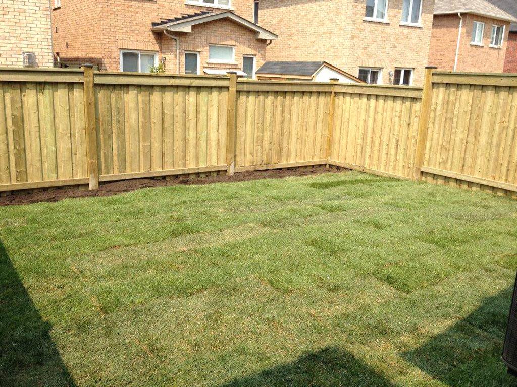 best lawn care toronto