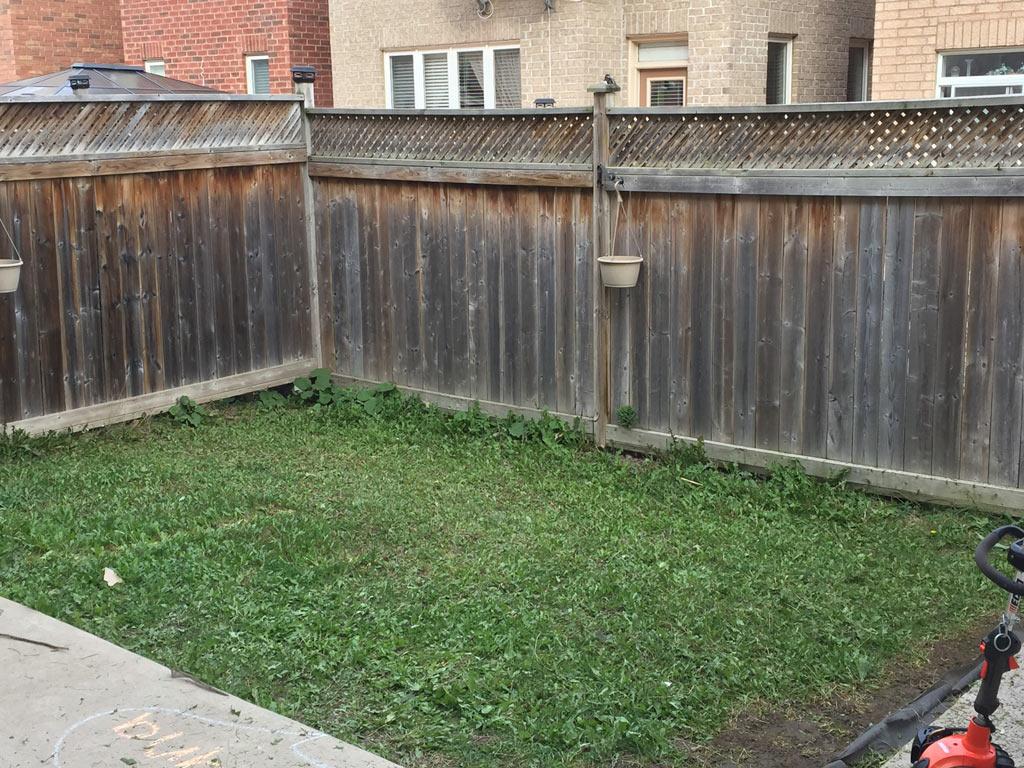 lawn care richmond hill