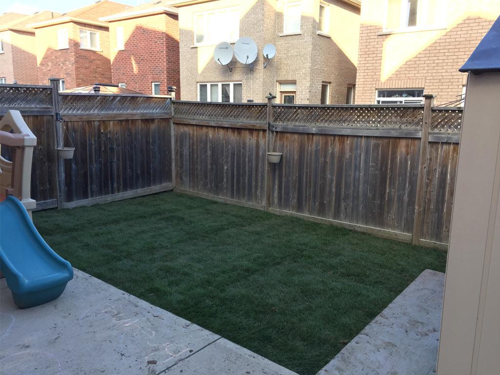 lawn care toronto