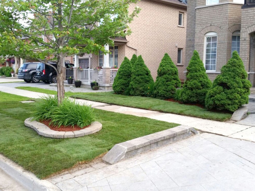 snow removal thornhill