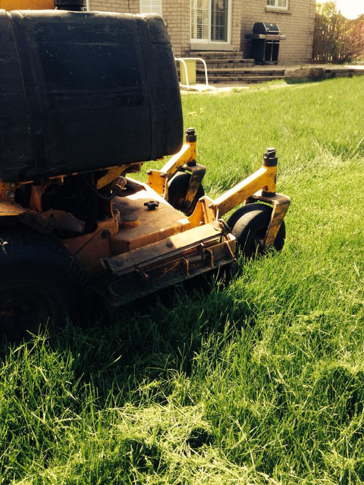 lawn-maintenance-service-york-region