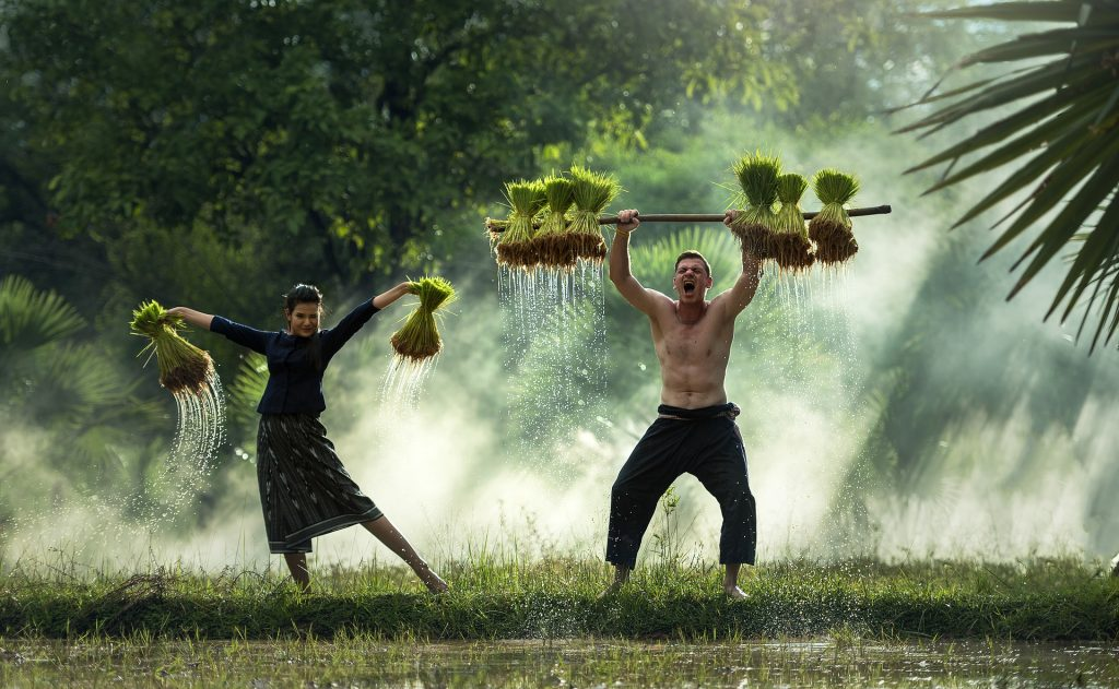 photo of a couple working on lawn maintenance