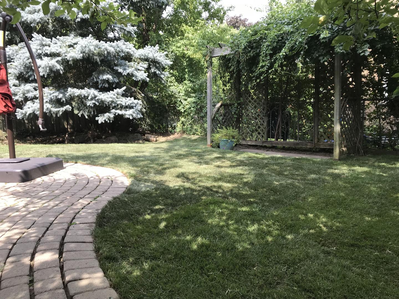 gta lawn care