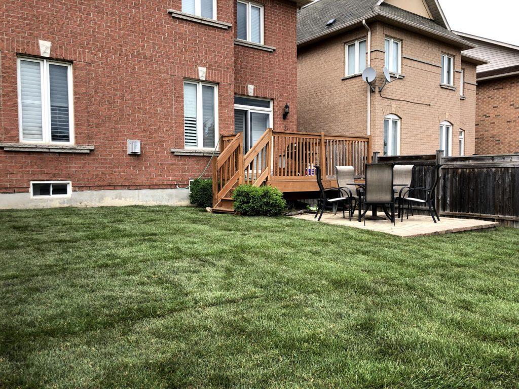 backyard with deck sodding after - interlock installation toronto