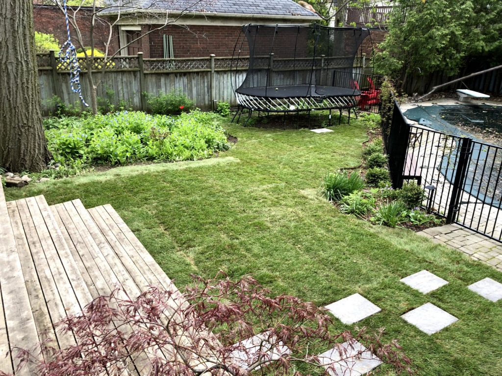after install of a new lawn and stone paving -  can you fertilize new sod