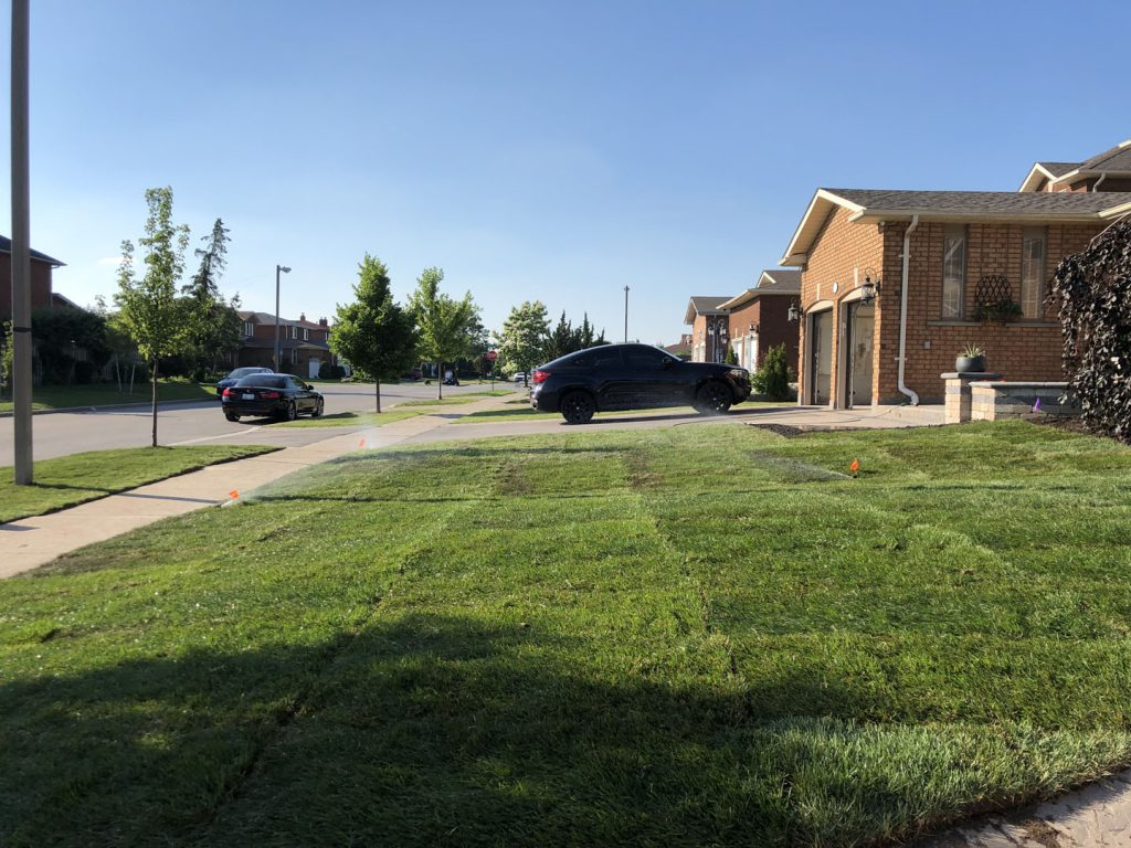 front yard landscaping and sodding after - landscaping york region