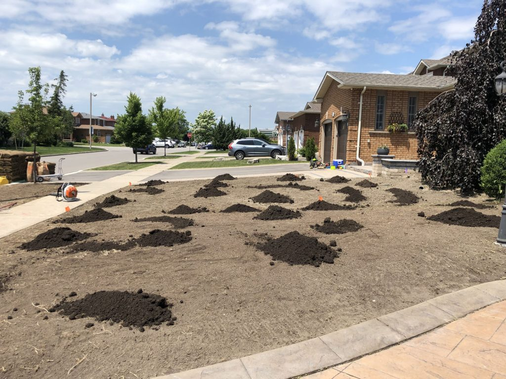front yard landscaping and sodding in progress - landscaping richmond hill