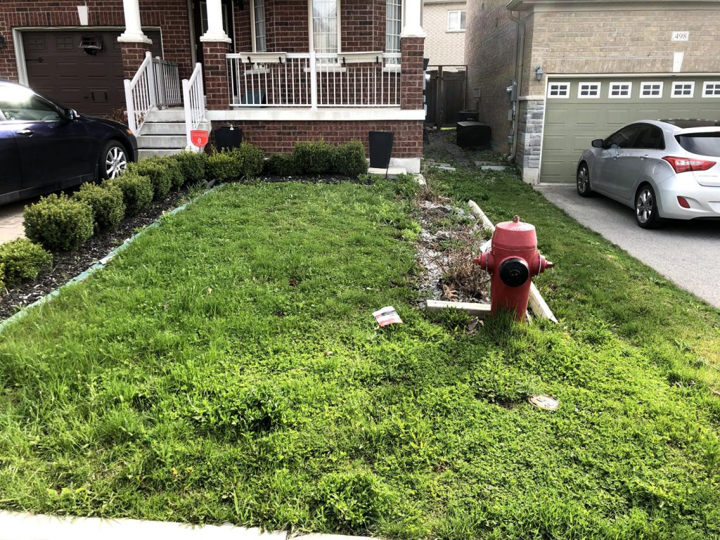 front yard grass sodding before - lawn care richmond hill