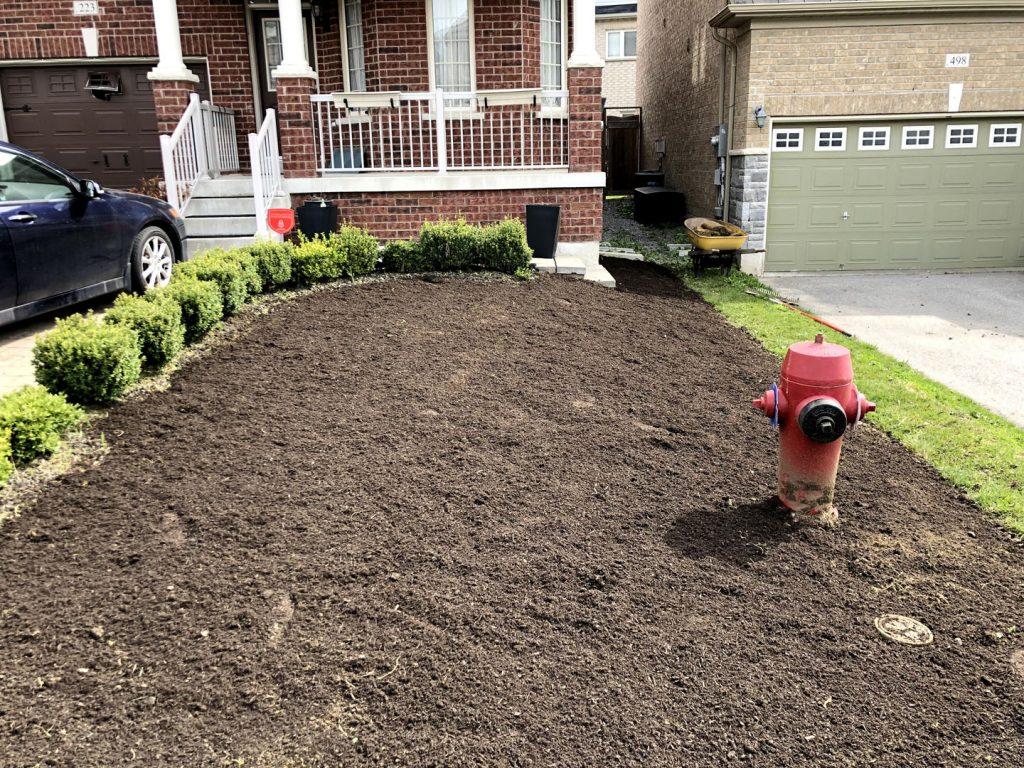 front yard grass sodding in progress - lawn care toronto