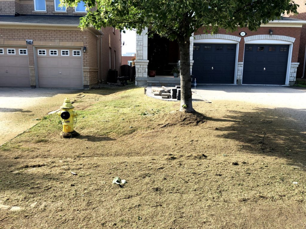 front yard sodding and interlocking before - tree removal gta