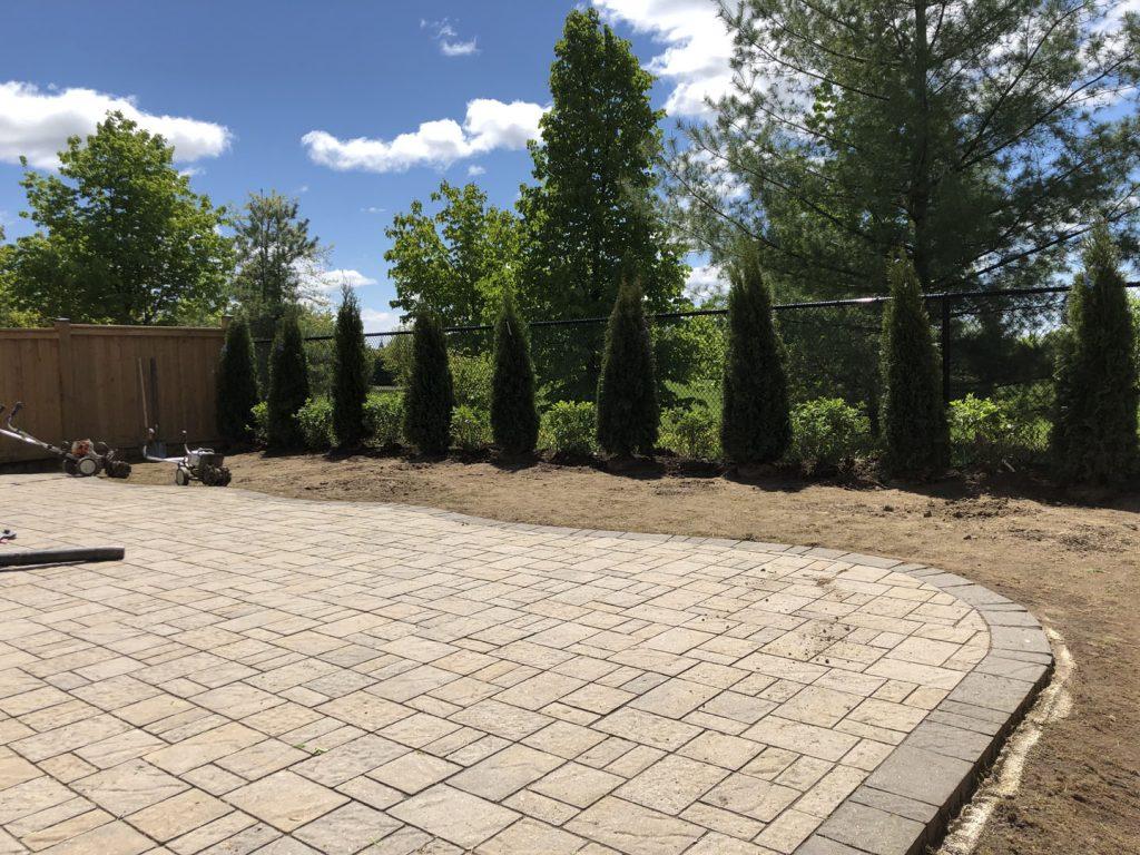 backyard tree plant and sodding lawn, in progress - interlocking toronto