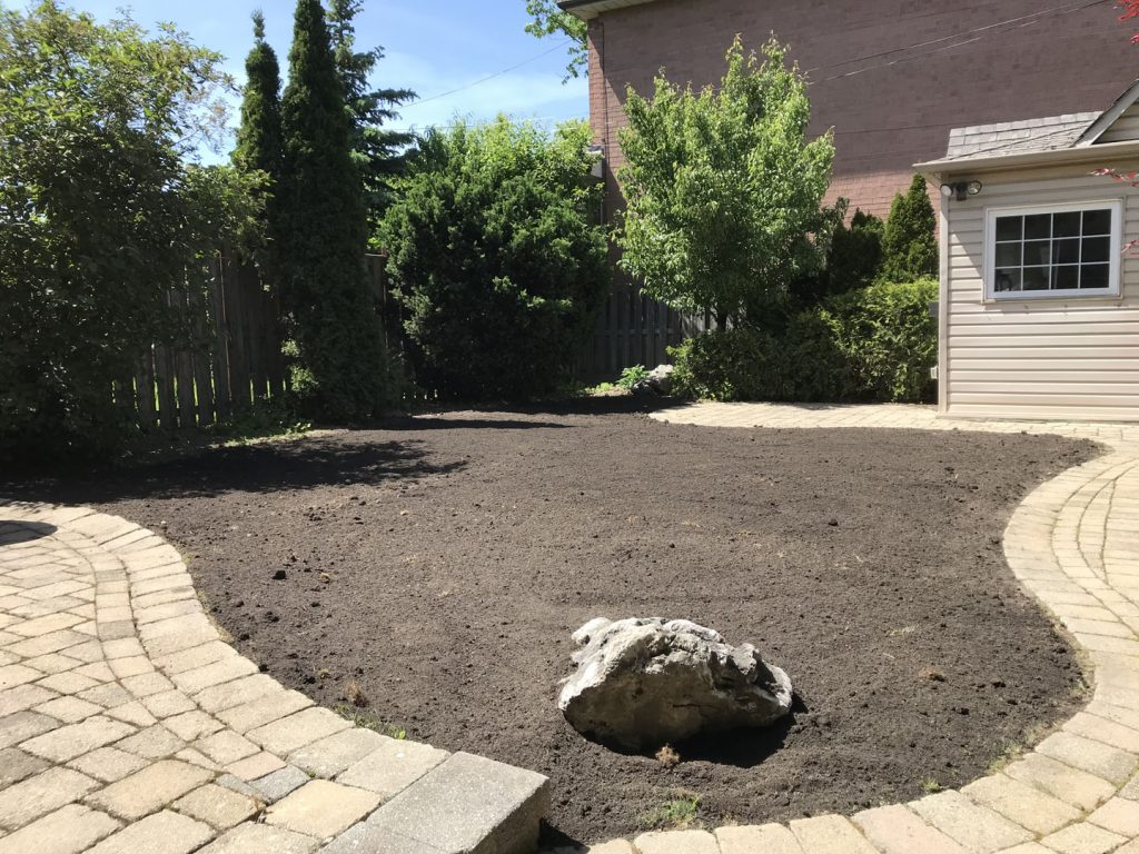backyard round lawn sodding in progress - landscaping york region