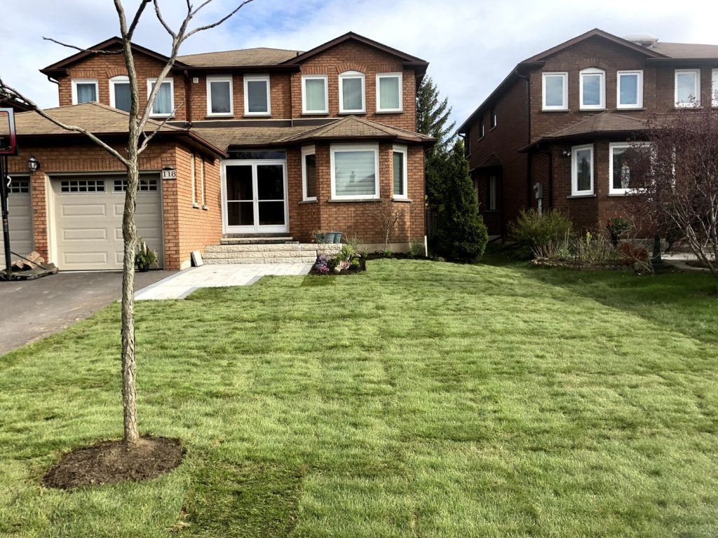 custom house front yard after - lawn maintenance toronto