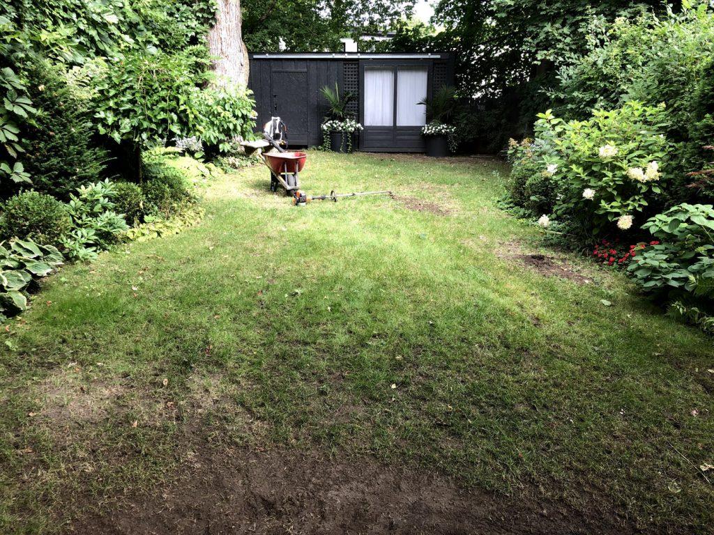 lawn restoration before - driveway sealing newmarket