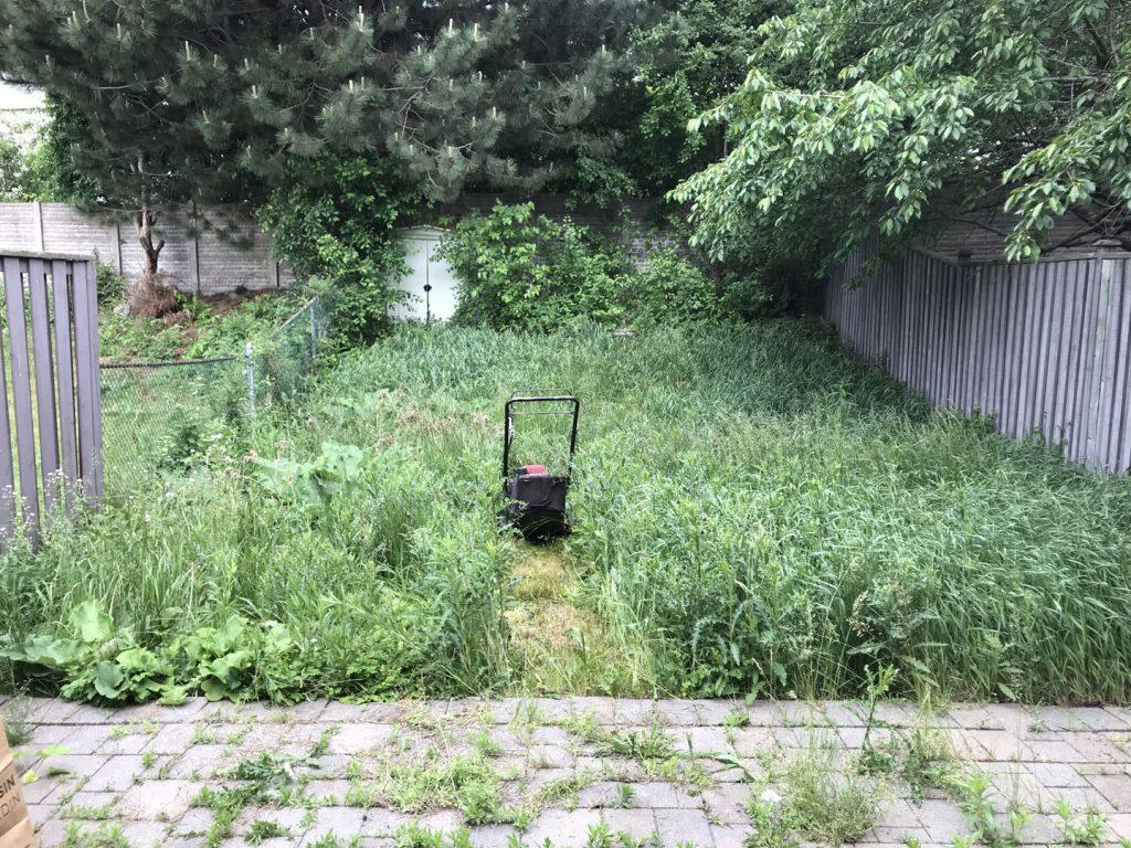 small backyard sodding before - interlock driveway cost toronto