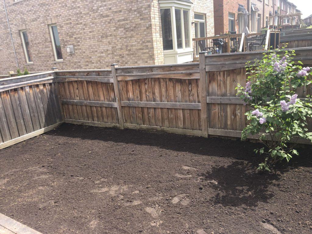grass replacement near a fance in progress - sod installation toronto
