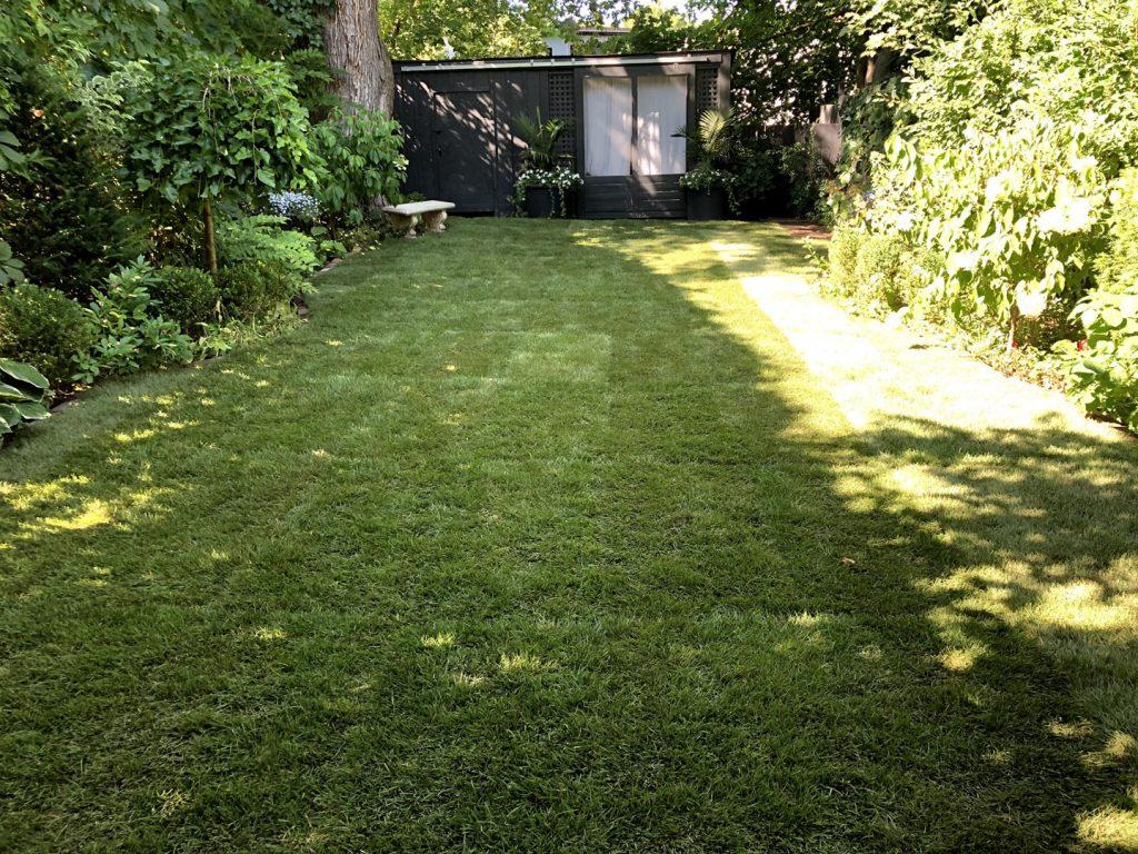 lawn restoration after - driveway sealing vaughan