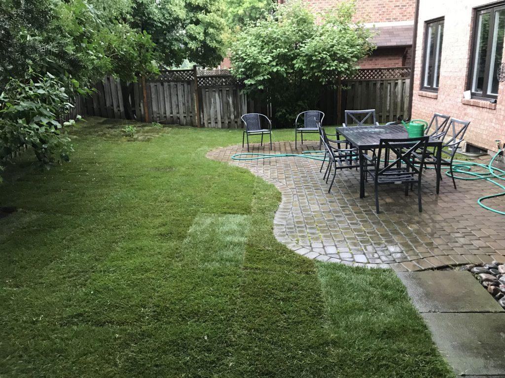 backyard sodding near patio after - driveway repair toronto