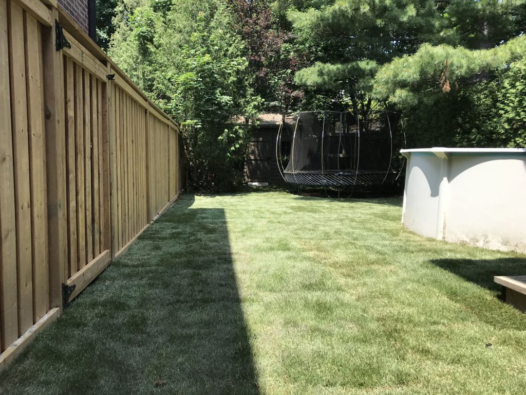 new sodding layout after - best lawn care toronto