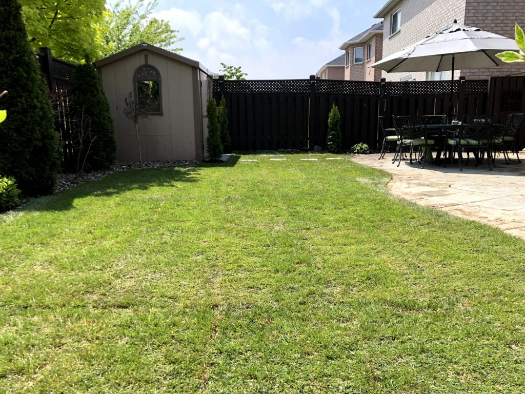 sodding lawn replacement in back yard after - landscaping companies in richmond hill