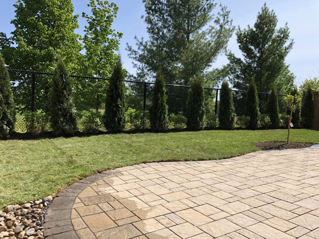 backyard tree plant and sodding lawn after -  landscaping companies in richmond hill
