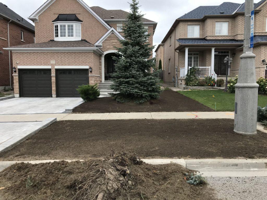 street lawn sodding, old lawn remove - lawn service toronto