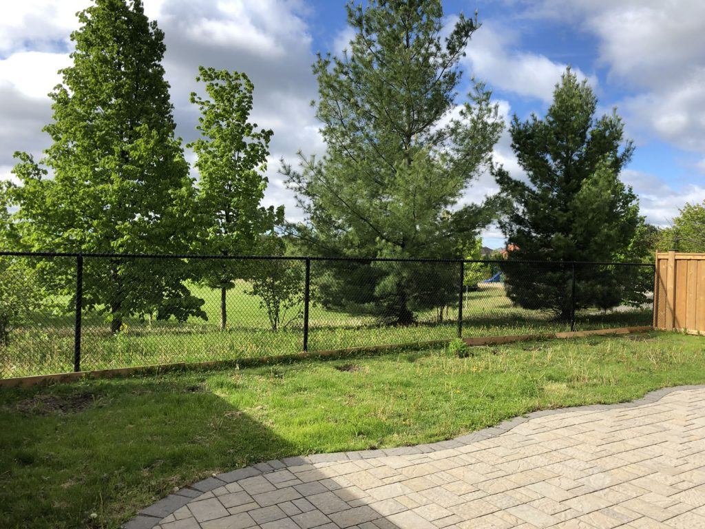 backyard lawn replacement and stone interlocking before sodding - how to maintain new sod