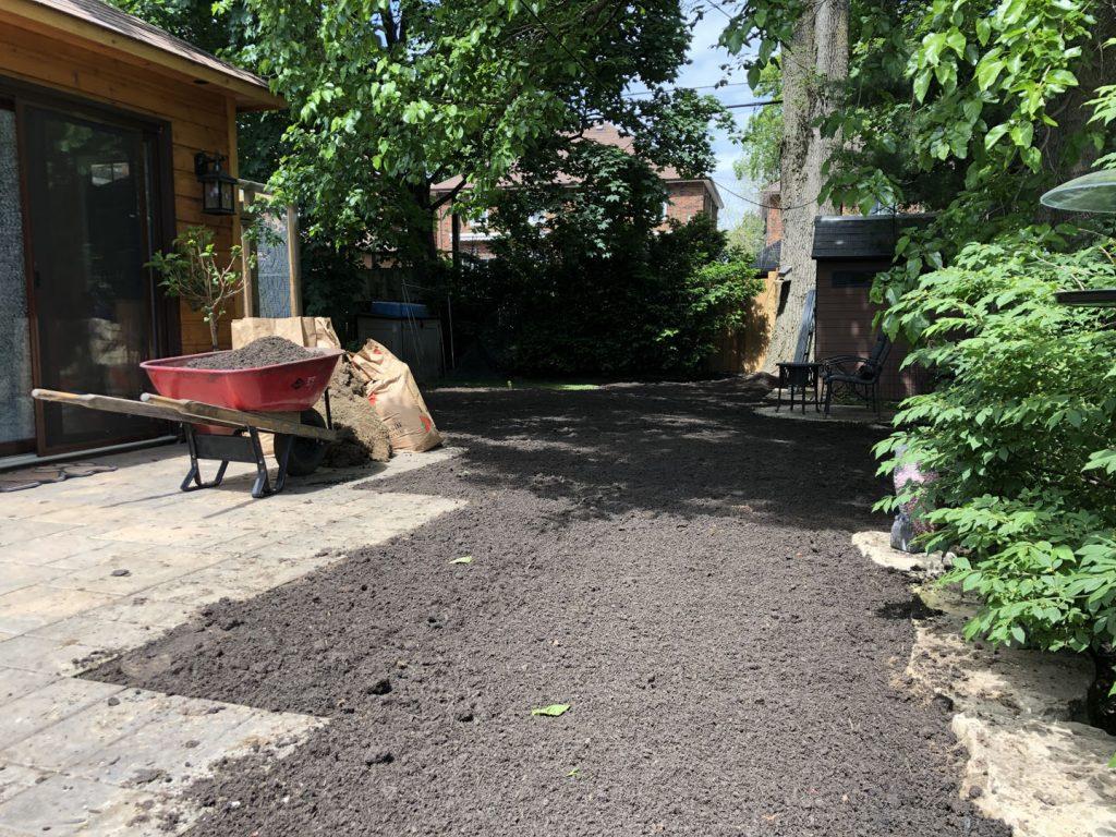 back yard sodding near sidewalk in progress - tree removal gta