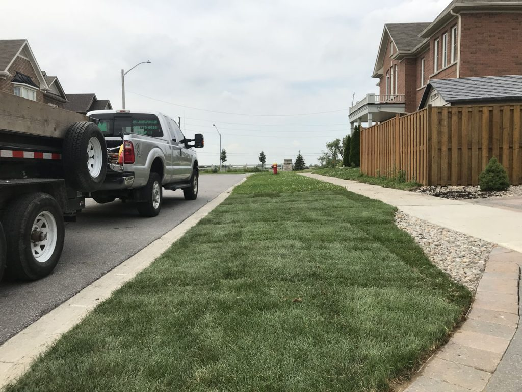 walkway sodding after - toronto landscaping company
