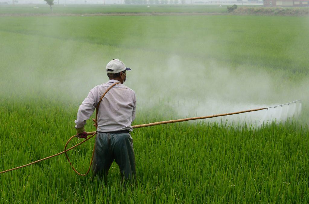 Lawn Fertilizing Services