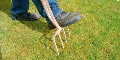 What It Is Lawn Aeration?