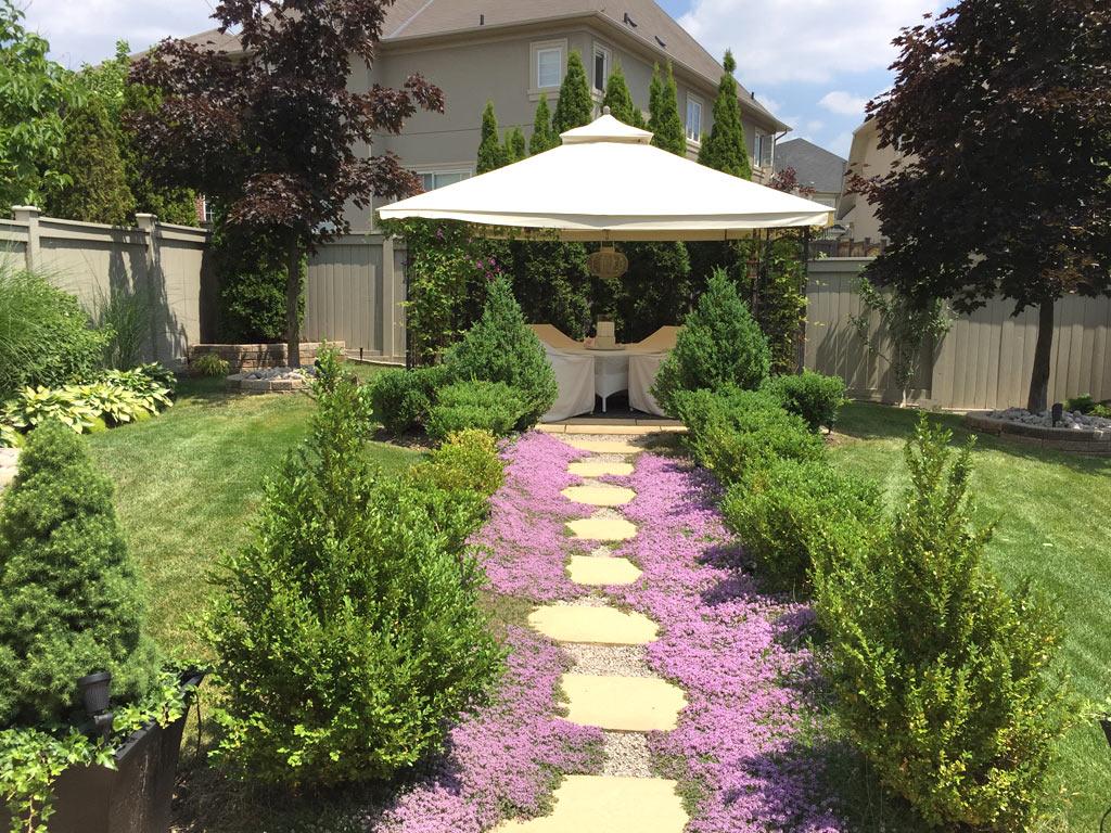 Amazing Backyard Landscaping with New Sodding Installation Brampton