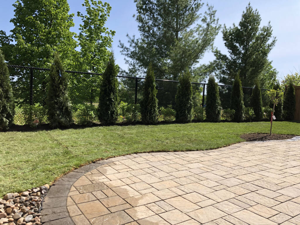 Amazing Backyard with Trees and New Sodding Vaughan