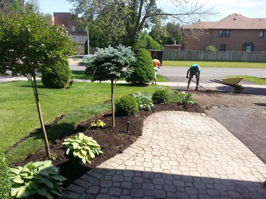 Front House Landscaping with New Sodding Mississauga