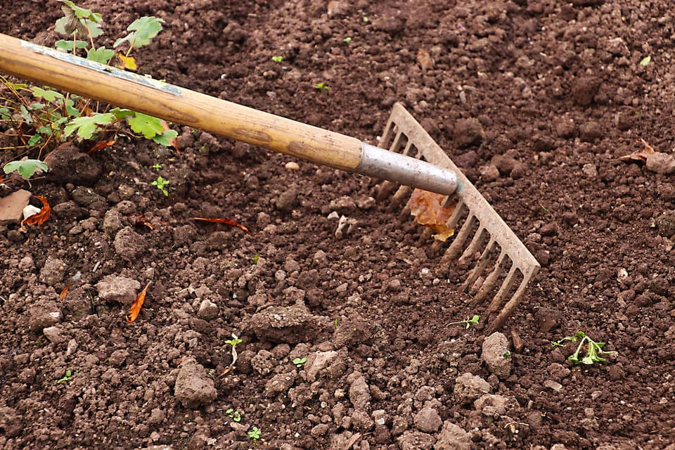 Garden rake used to drag the soil to cover the seeds